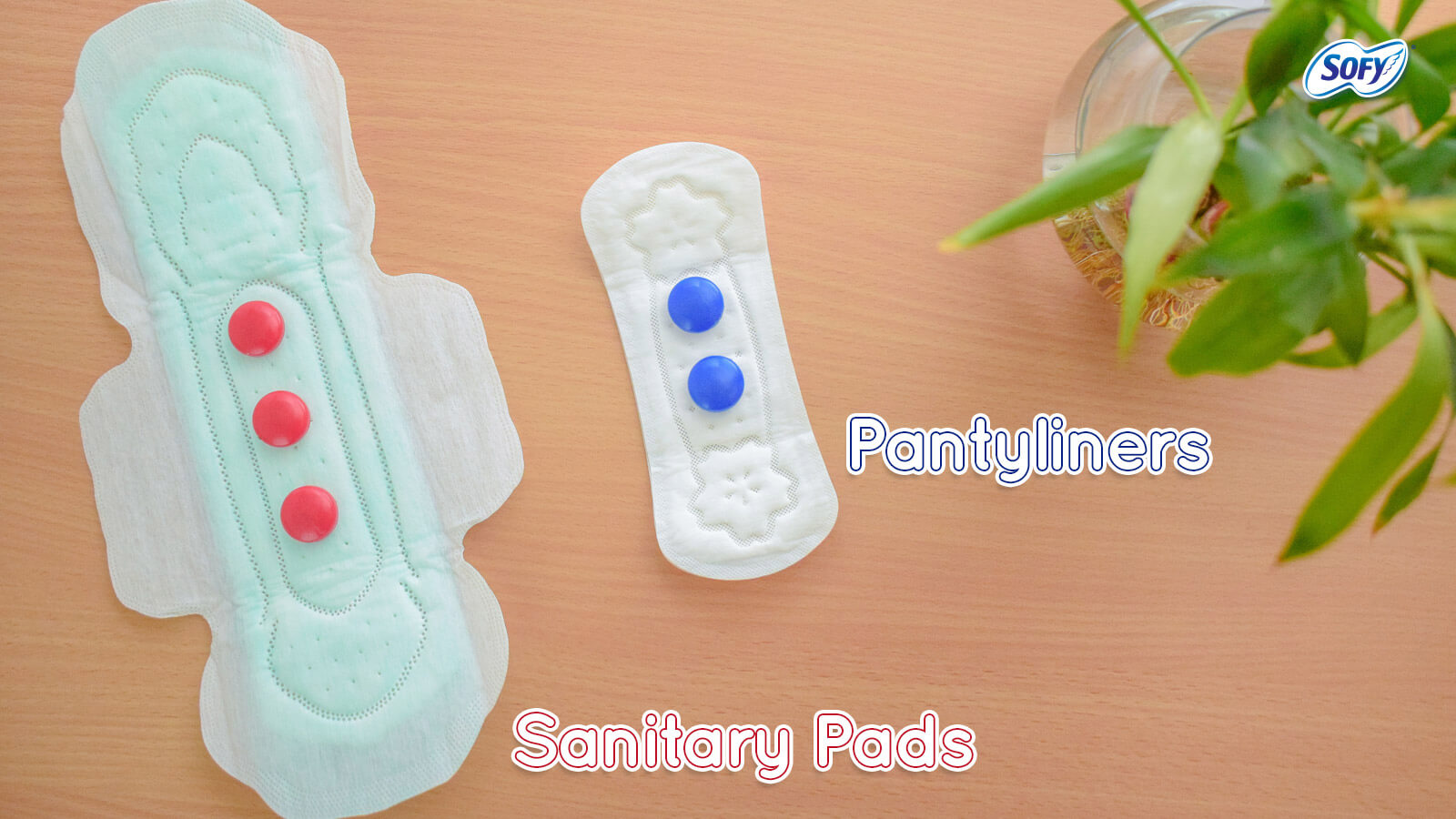 Pads & Panty liners: How They Are Different! | Sofy